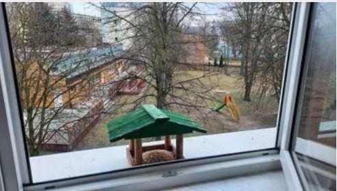 Uczniowie naszej szkoły pomagają ptakom przetrwać zimę.